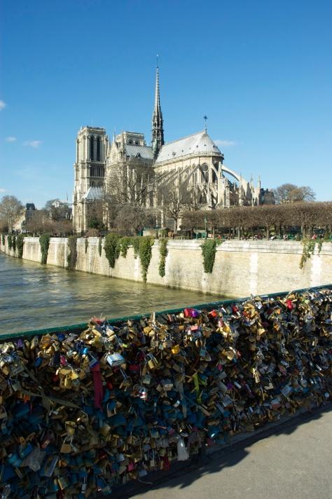 This kills the view of Notre Dame/Ça tue la vue de Notre Dame (Feb/Fev 2014)